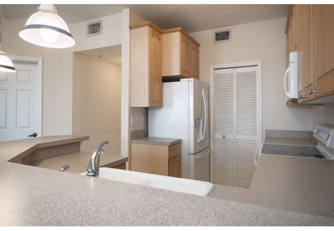 Condos feature spacious kitchens with ample prep space.
